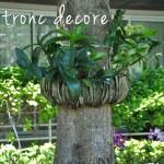 La décoration végétale