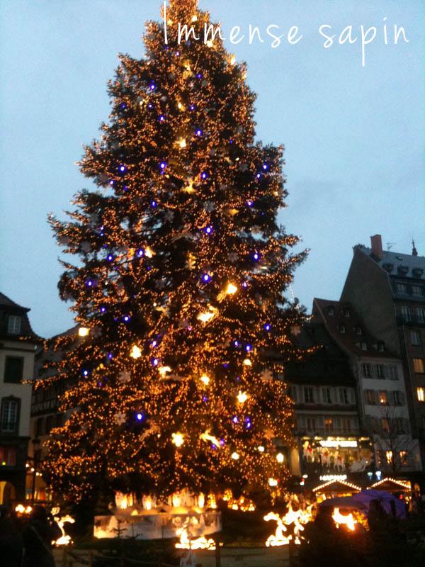 Grand sapin à Strasbourg