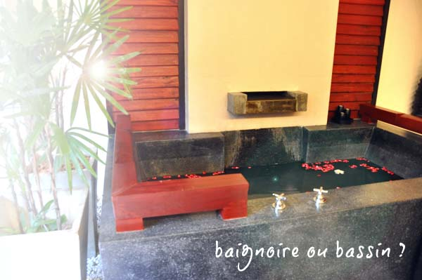 Baignoire-bassin